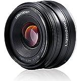 Lightdow 35mm F1.7 APS-C E-mount Prime Lens for Sony Mirrorless Camera: Alpha A5000 A5100 A6000 A6300 NEX-3 NEX-3N NEX-5 NEX-5T NEX-5R NEX-6