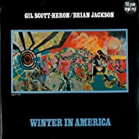 Winter in America [12 inch Analog]