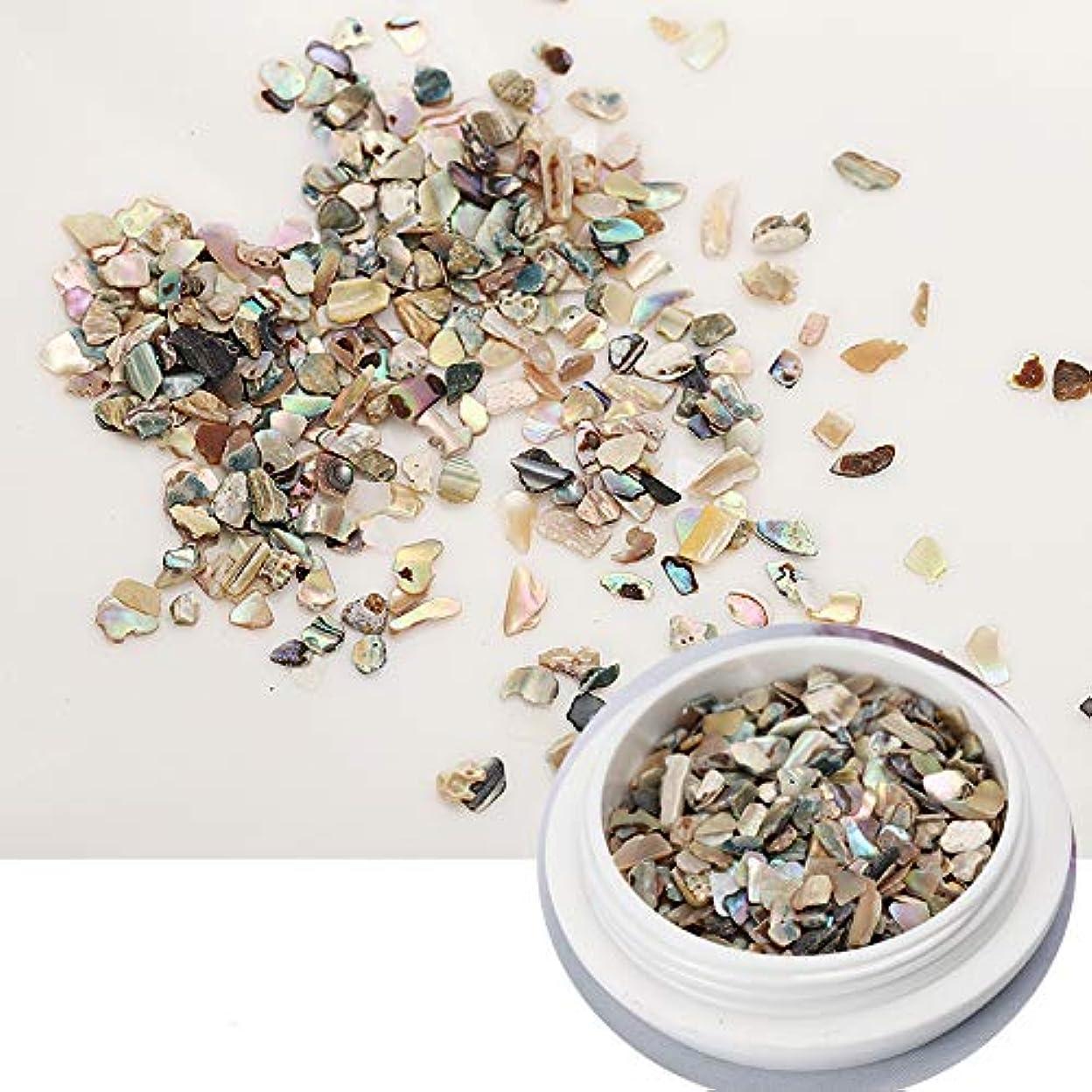 ピッチスライスレビューネイル石パーツ ネイル貝殻風 シェル 貝 レジン ジェルネイル ネイルアート ネイルパーツ (2)