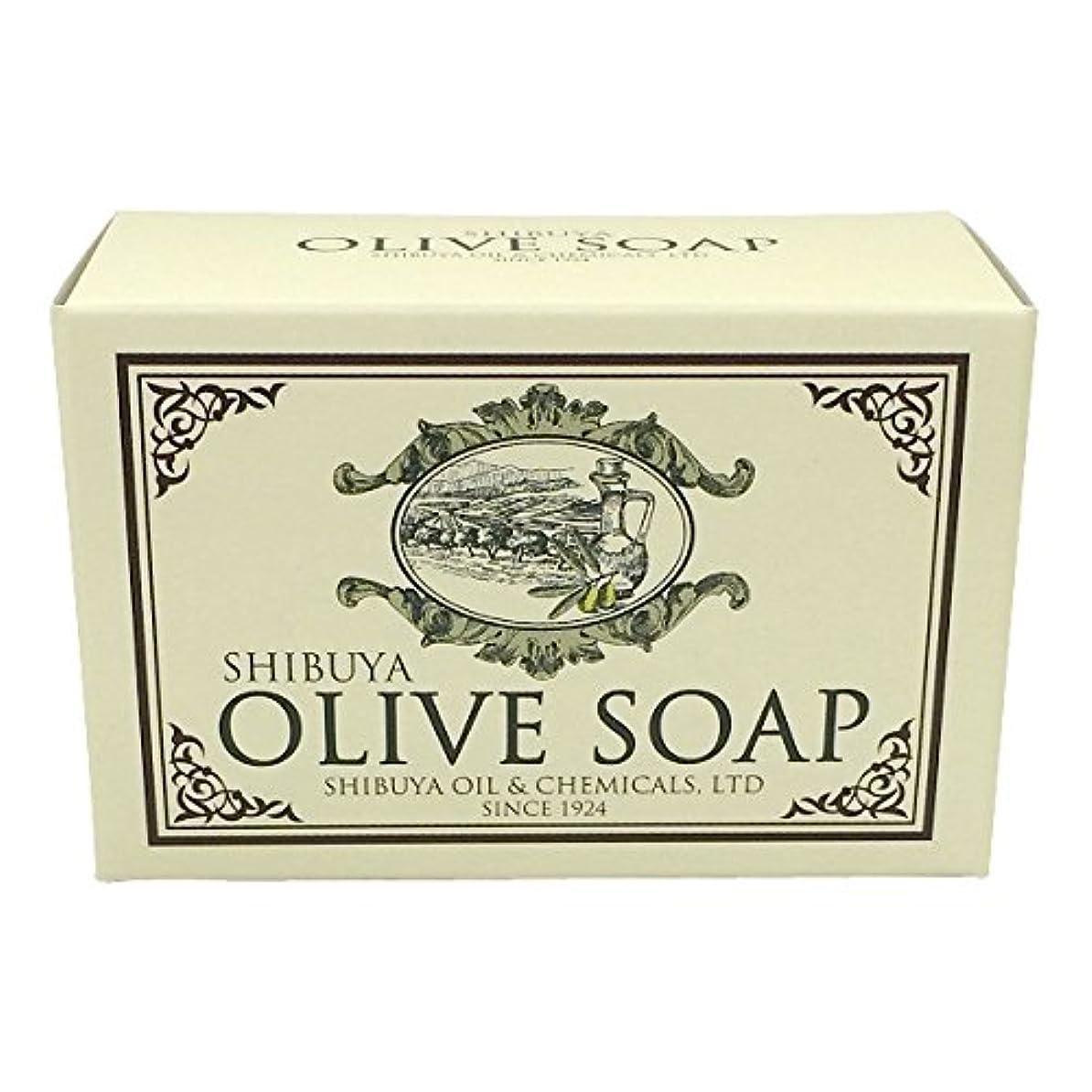 入る十分な法令SHIBUYA OLIVE SOAP (100G)