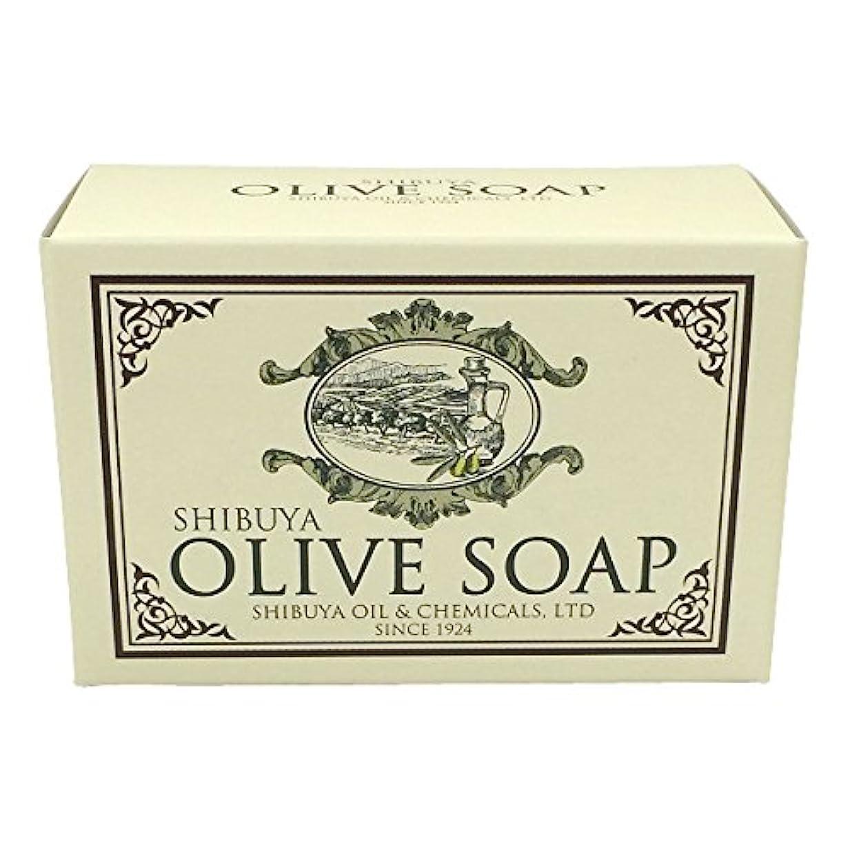 活発無傷列挙するSHIBUYA OLIVE SOAP (100G)