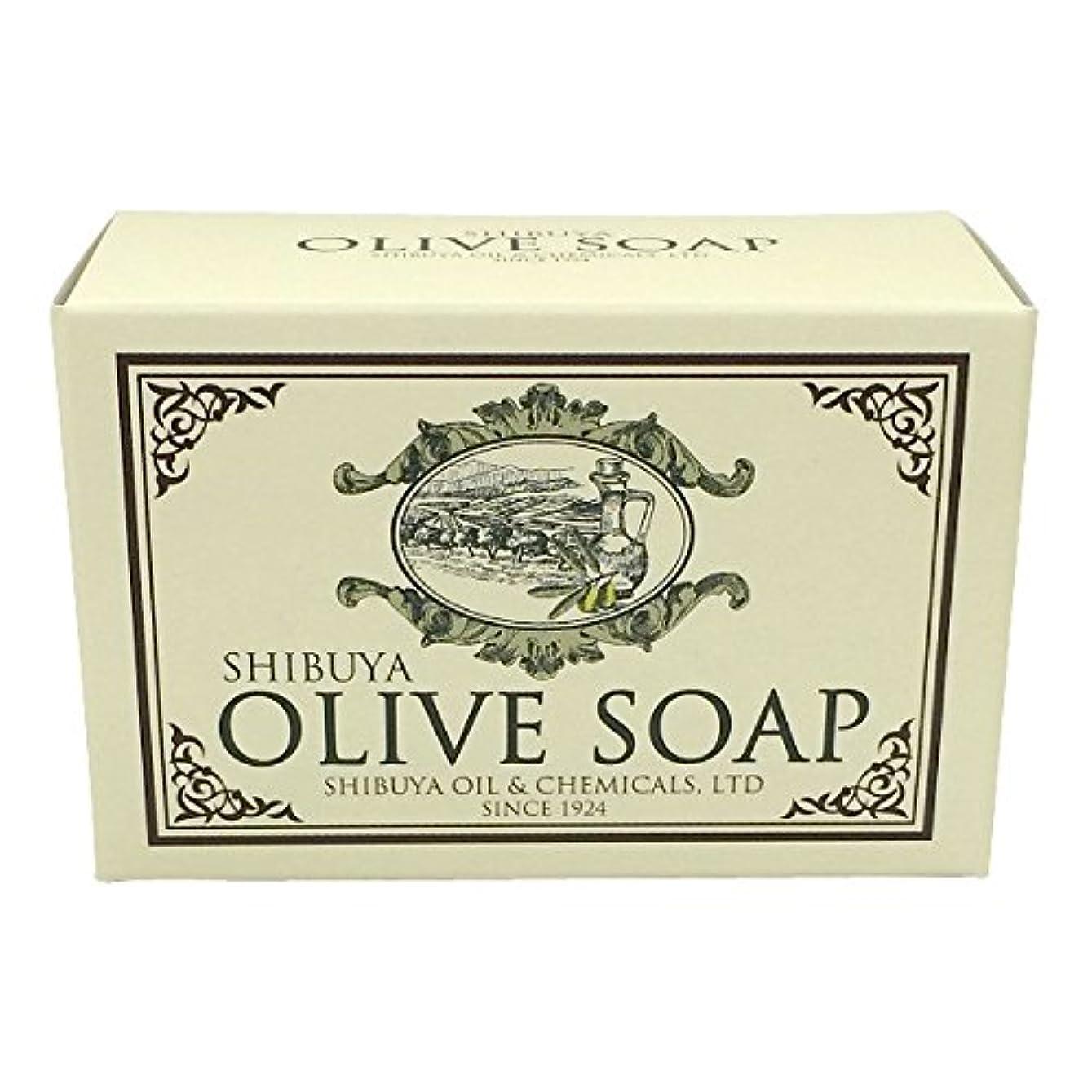 有益おそらく届けるSHIBUYA OLIVE SOAP (100G)