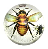 Honey BeeガラスドームPaperweight withフランス語スクリプト