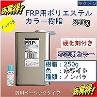 キクメン FRPカラーノンパラ樹脂250g 硬化剤付き 白色 汎用ベーシック