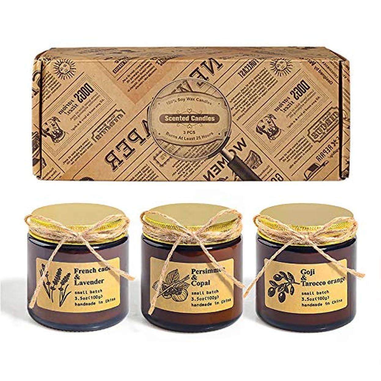 リーズアコーふざけたアロマセラピーキャンドル、秋の装飾の香りキャンドル屋内または旅行用のポータブル香りキャンドル、3個