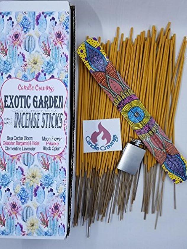 一貫性のない松ショルダーScented Incense Sticks 6 Pack With Painted Holder - Exotic Garden ? Pikake Black Opium Baja Cactus [並行輸入品]
