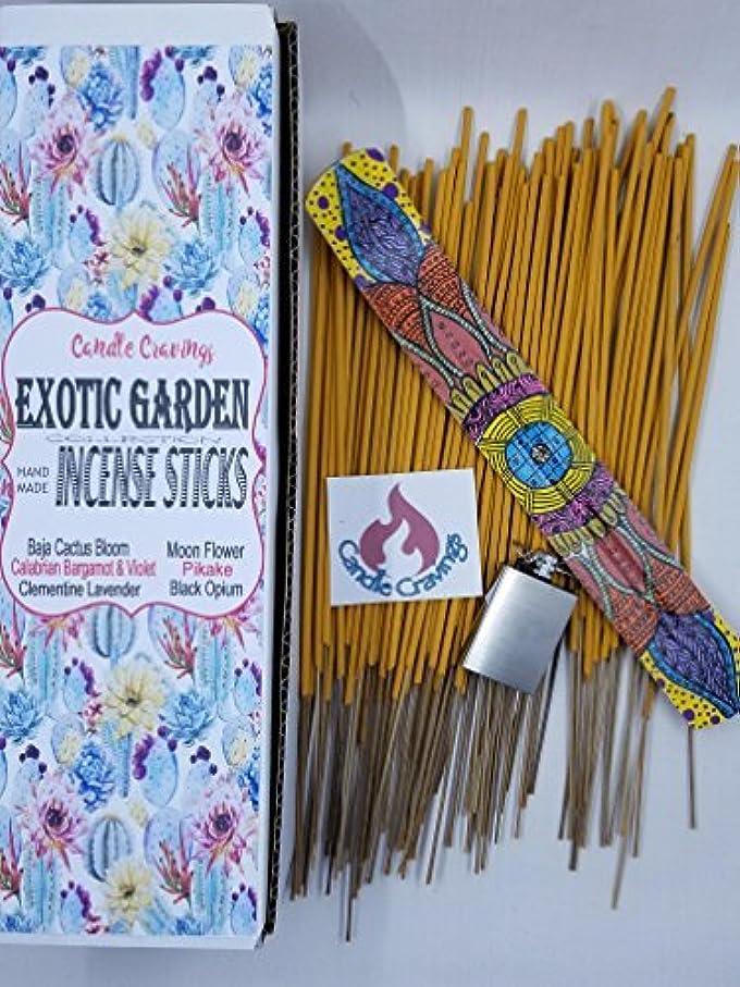 怖がって死ぬモバイルモールス信号Scented Incense Sticks 6 Pack With Painted Holder - Exotic Garden ? Pikake Black Opium Baja Cactus [並行輸入品]