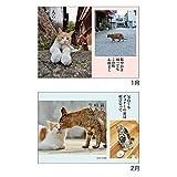 アートプリントジャパン 2019年 猫川柳 カレンダー vol.002 1000100939 画像