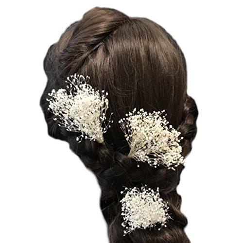 irudepain(イルデパイン) 髪飾り かすみ草 プリザ...