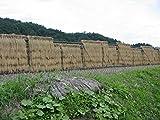 【精米】【Amazon.co.jp限定】会津産 白米 コシヒカリ 5kg 平成29年産