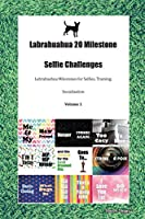 Labrahuahua 20 Milestone Selfie Challenges Labrahuahua Milestones for Selfies, Training, Socialization Volume 1