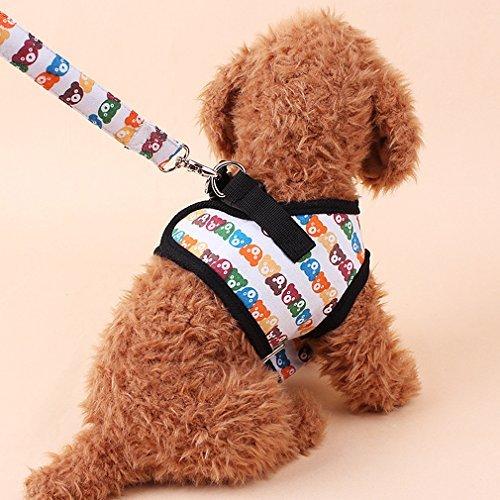 KINLO ハーネス&リードセット 散歩 が楽しくなる選べる カラフルくま柄 胸あて式 犬用リード 小型犬 介護 ハーネス ソフト 軽量 クッションメッシュ 首輪 胴輪 おでかけ 安心安全 丈夫ペット用品 M サイズ