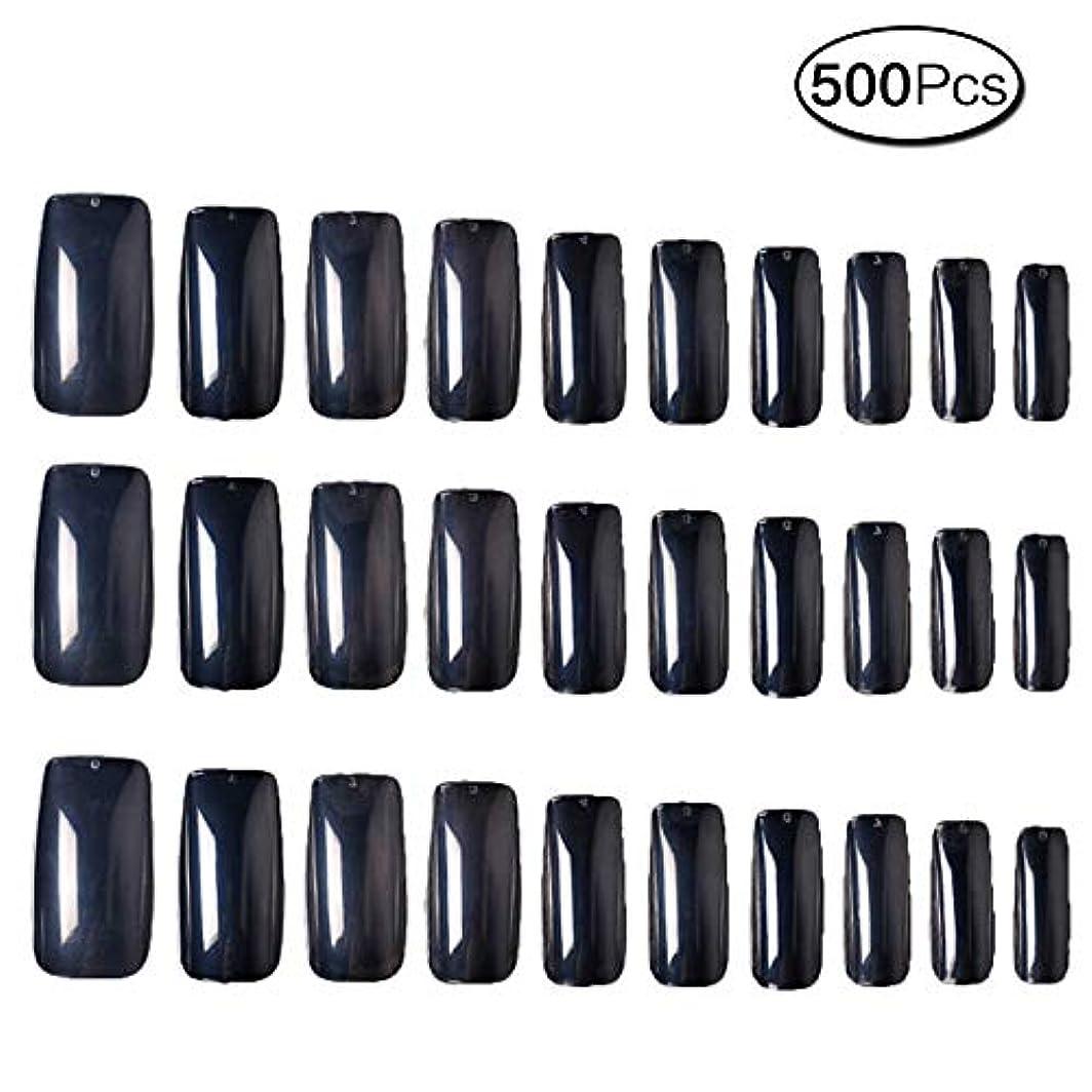 500枚 10サイズ 付け爪練習用 つけ爪 無地 ロングネイルチップ透明
