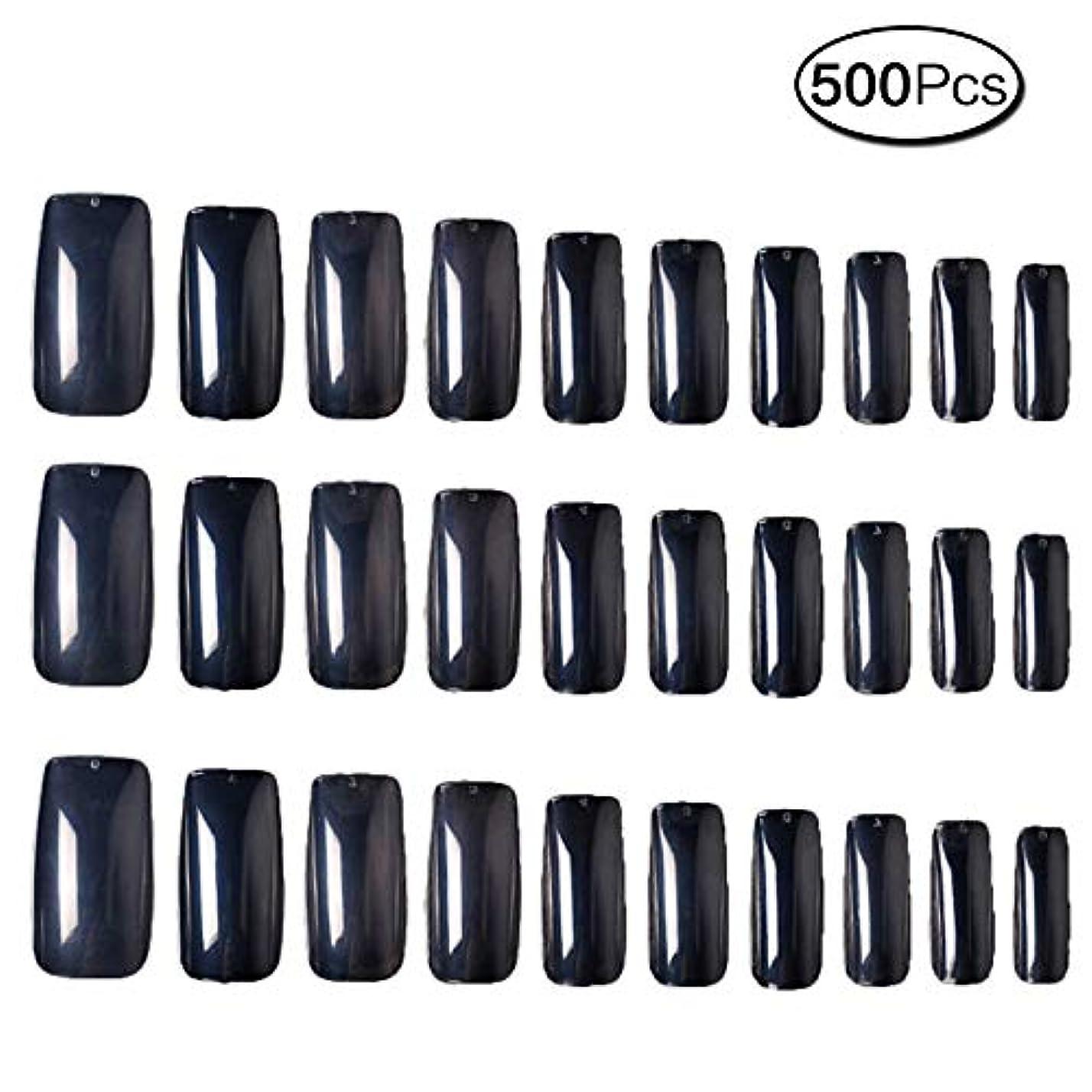 初心者ささいなオゾン500枚 10サイズ 付け爪練習用 つけ爪 無地 ロングネイルチップ透明
