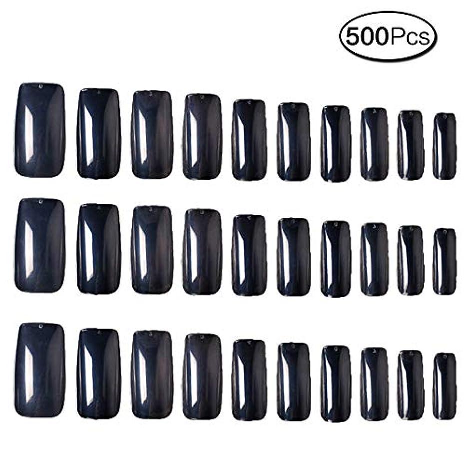 フック医薬品謝る500枚 10サイズ 付け爪練習用 つけ爪 無地 ロングネイルチップ透明