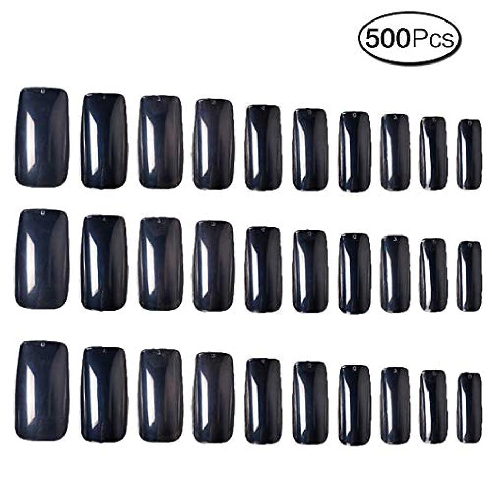 含意風景ゆるく500枚 10サイズ 付け爪練習用 つけ爪 無地 ロングネイルチップ透明