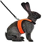 Niteangel Adjustable Soft Harness with Elastic Leash for Rabbits (M, Orange)