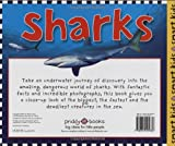 Sharks And Other Dangers of the Deep (Priddy Books Big Ideas for Little People) 画像