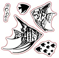 Fishes Transparent Clear Stamps for DIY Scrapbooking/Card Making/Kids Christmas Fun Decoration Supplies ST0045
