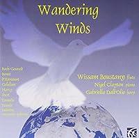 Wandering Winds