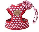 Rant Bell(ラント ベル) 小型犬 ハーネス リード セット ドット柄 かわいい 肉球 (赤 M)