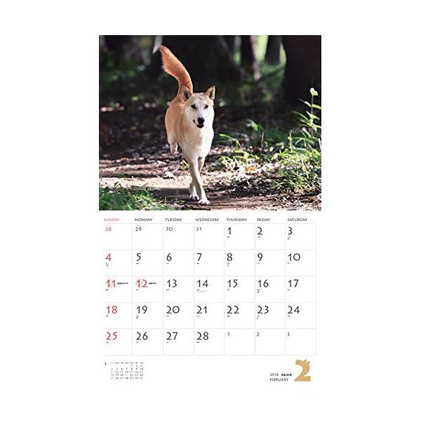 カレンダー2018 柴犬 (ヤマケイカレンダー...の紹介画像4