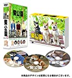 柴公園 TVシリーズ DVD-BOX[DVD]