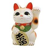 開運 招福 招き猫(常滑焼) 6寸左 白 TB7504