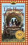 Psychiatric Mental Health Nursing (Little House-the Laura Years)