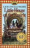Psychiatric Mental Health Nursing (Little House-the Laura Years)