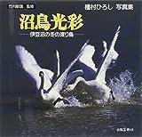 沼鳥光彩―伊豆沼の冬の渡り鳥 種村ひろし写真集