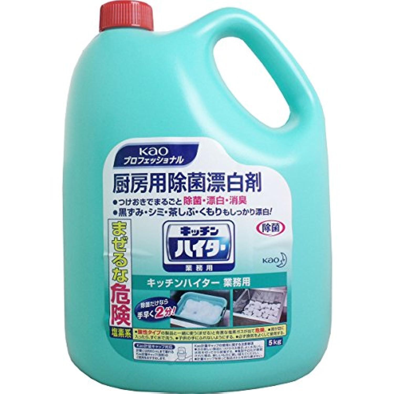 花王 キッチンハイター(業務用) 5kg ×3個