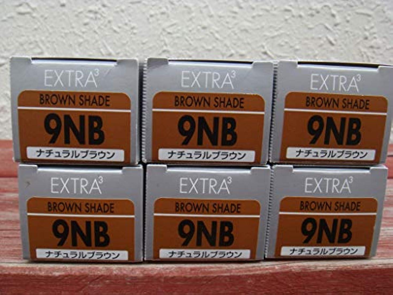 支店アイスクリームブレースカラーアクシス エクストラキュービック 9NB