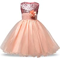 NNJXD Girl Flower Sequin Princess Tutu Tulle Baby Party Dress