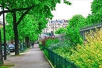 【フランスの風景ポストカード】パリの風景はがきハガキ葉書Paris2008年