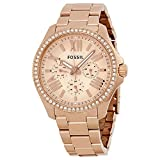 FOSSIL Cecile Multifuntion Gold Rose AM4483