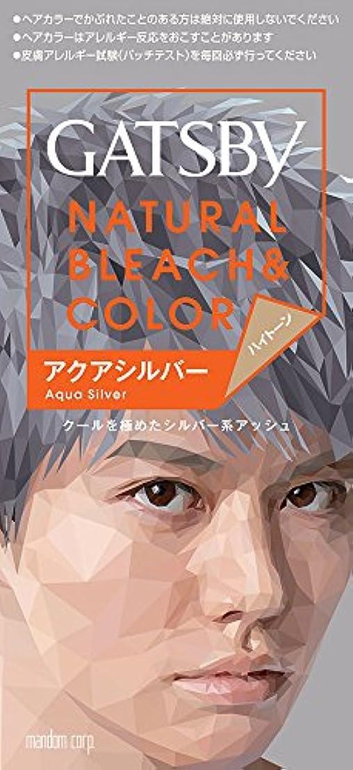 カジュアル闘争ドレインギャツビー カラーアクアシルバー 【HTRC5.1】