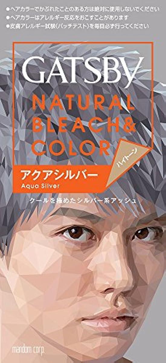 長方形虹血統ギャツビー カラーアクアシルバー 【HTRC5.1】