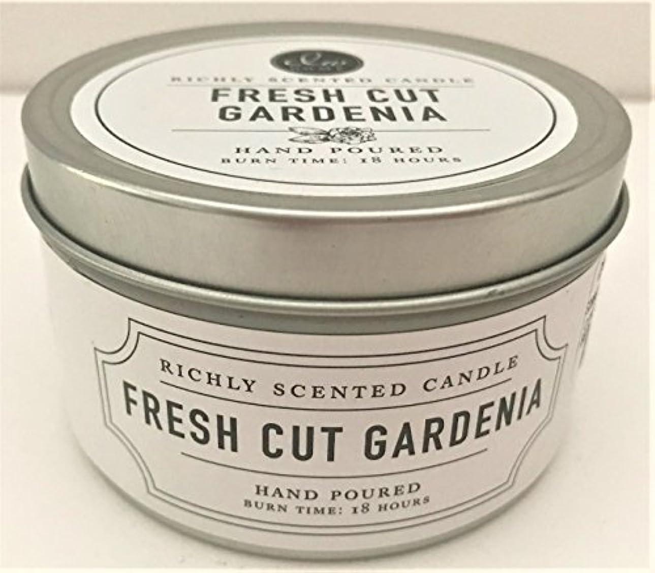過言添加剤効率的DWホーム旅行サイズScented Candle