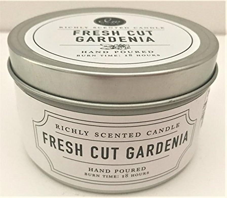 贅沢な無意味キャロラインDWホーム旅行サイズScented Candle