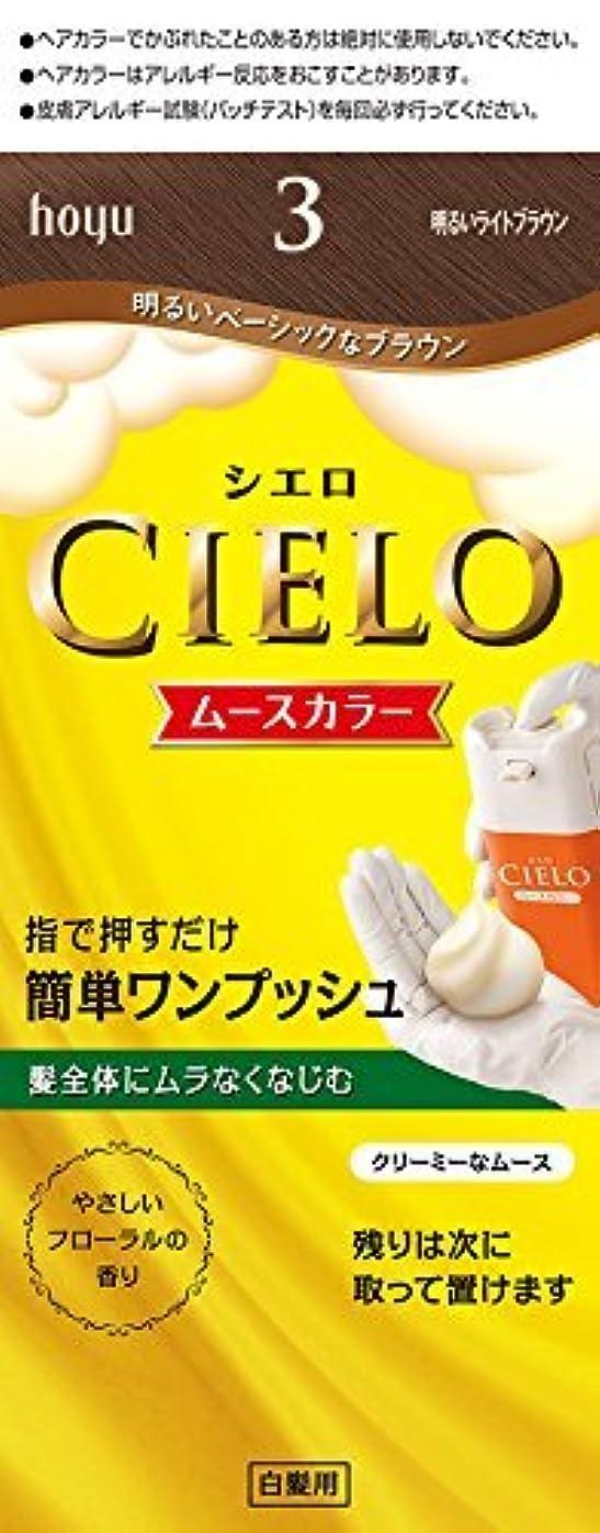 顔料ベーコン欲求不満ホーユー シエロ ムースカラー 3 (明るいライトブラウン)×6個