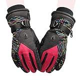 スキー手袋 レディース 防水加工 5本指仕様 冬用 防寒対策 保温性が抜群 スノーグローブ 通気性 防風性良い 厚い 滑り止め 手袋 スポーツ 自転車 バイク サイクリング 登山 スノーボード 通勤