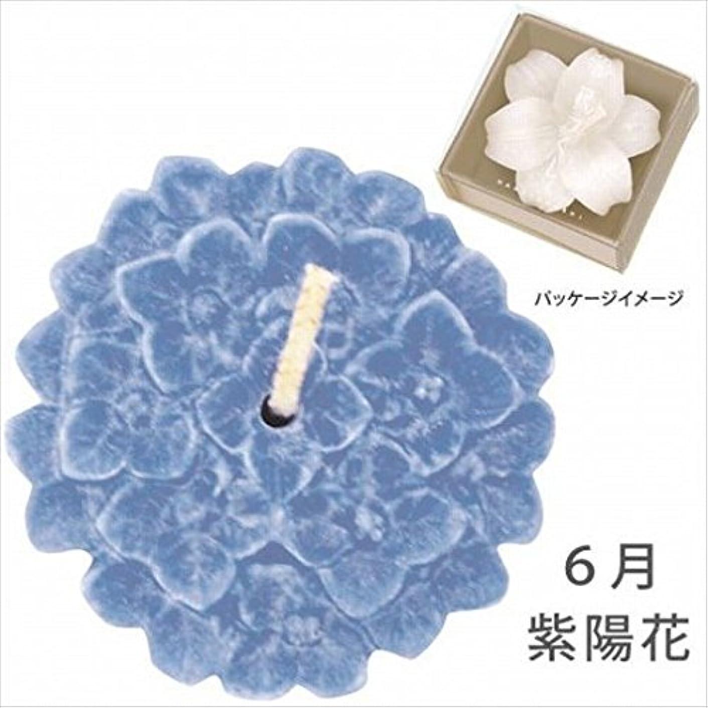 デンマーク負荷マオリkameyama candle(カメヤマキャンドル) 花づくし(植物性) 紫陽花 「 紫陽花(6月) 」 キャンドル(A4620570)