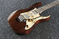 Ibanez / Steve Vai Signature Model JEM77WDP-CNL Charcoal Brown Low Gloss アイバニーズ