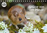 Gruesse von der Maus! (Tischkalender 2018 DIN A5 quer) Dieser erfolgreiche Kalender wurde dieses Jahr mit gleichen Bildern und aktualisiertem Kalendarium wiederveroeffentlicht: Zauberhafte Bilder einer kleinen Maus! (Geburtstagskalender, 14 Seiten )