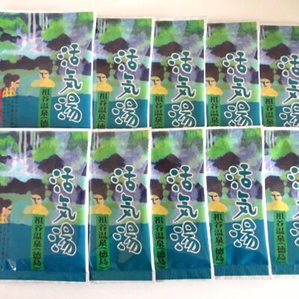 首謀者縞模様の宿活気湯 祖谷温泉(フローラル) 10包セット