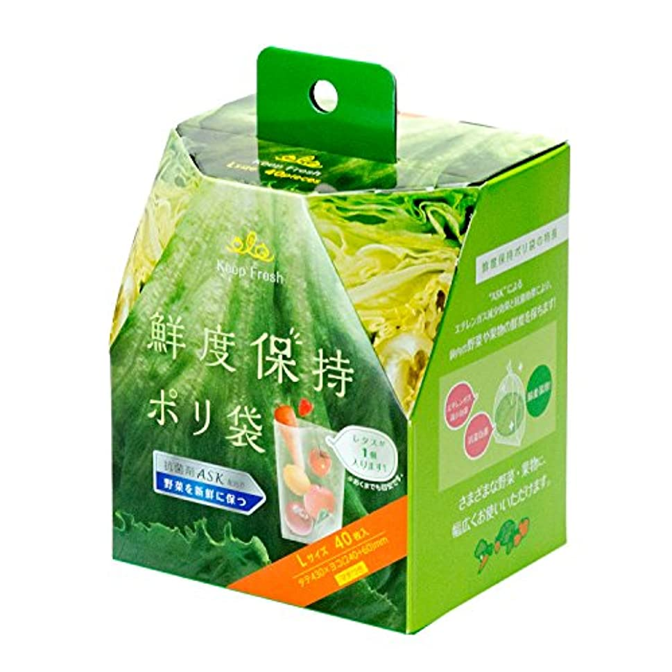 セッティング分割任命ストリックスデザイン 鮮度保持ポリ袋 半透明 Lサイズ 野菜 果物 新鮮に保つ SA-097 40枚入