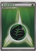 [ ポケモンカードゲーム XY ]  基本草エネルギー [ カードボックス ゼルネアス・イベルタル ver. エネルギーカード ]