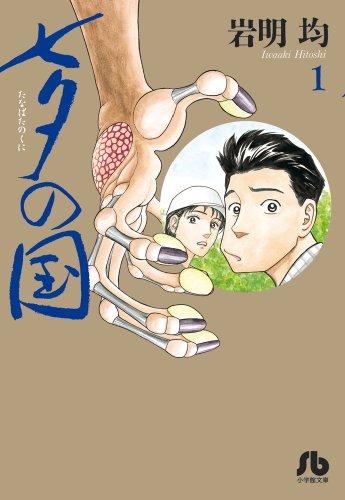 七夕の国 1 (小学館文庫 いK 1)の詳細を見る
