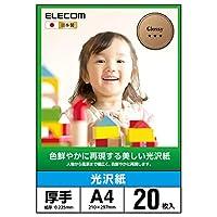 エレコム 写真用紙 A4 20枚 光沢 美しい光沢紙 厚手 0.225mm 日本製 【お探しNo:D171】 EJK-GANA420